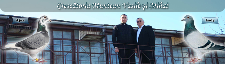 Munteanu Vasile Sibiu